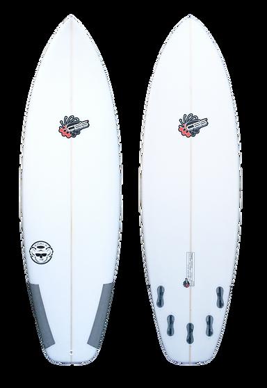CBS SURF - KOALA