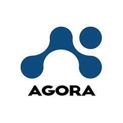 Agora Logo - עותק (2).png