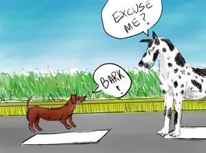 image courtesy of boilingwords big dog, small dog