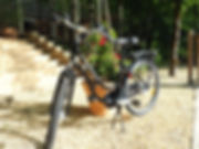 Electrical bike to let