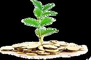 Planification financière, REER, retraite,