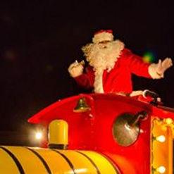 Swinging Santa.jpg