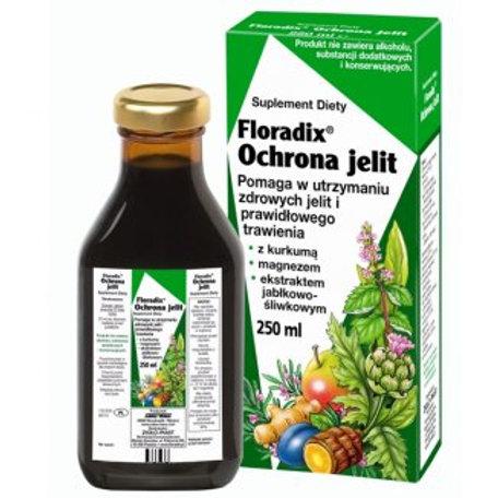 Floradix Ochrona Jelit 250ml