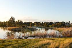 DSC01743_Farm Landscape2