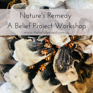 Nature's Remedy A Belief Project Worksop