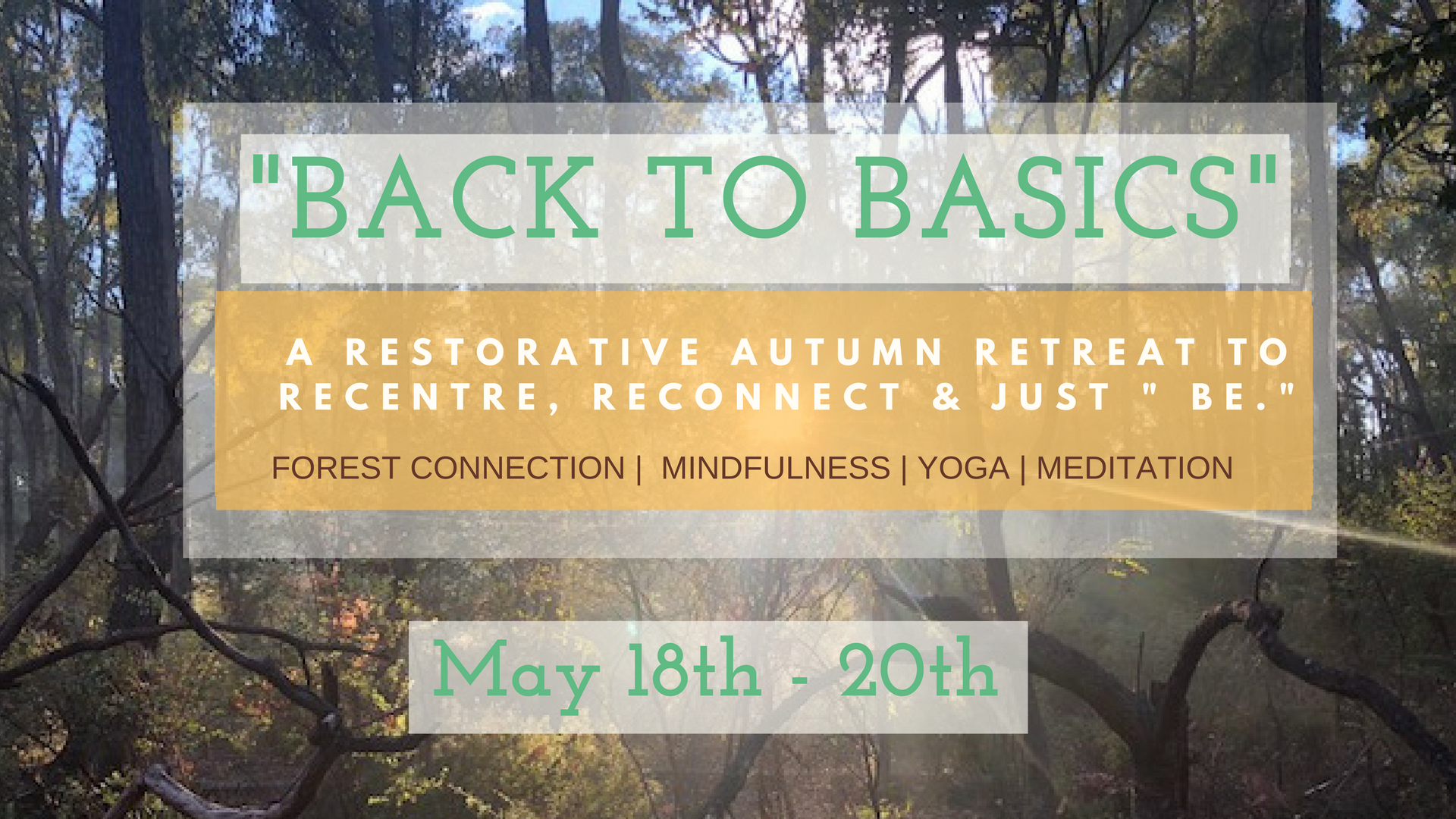 """ Back To Basics May 18th - 20th """
