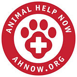 AHN Logo.jpg