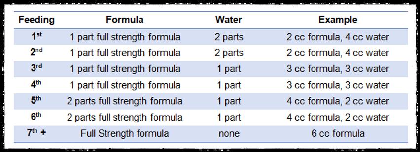 Squirrel Formula Transition Steps.png