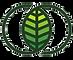 cropped-IWS-Logo.png