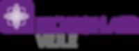 KIR_VEJLE_logo.png