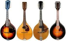 Amazing Mandolins!