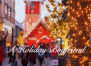 A HOLIDAY BOYFRIEND