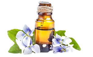 imgbin-young-living-essential-oil-doterr
