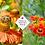 Thumbnail: Helenium 'Moerheim Beauty'