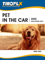 PET IN THE CAR