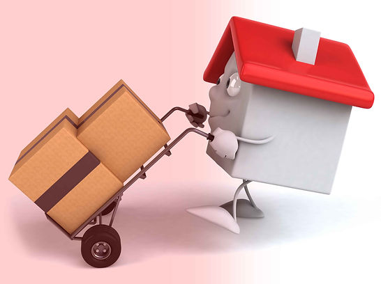 Orient Packers & Movers