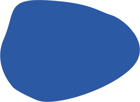 shape-2 (1).png