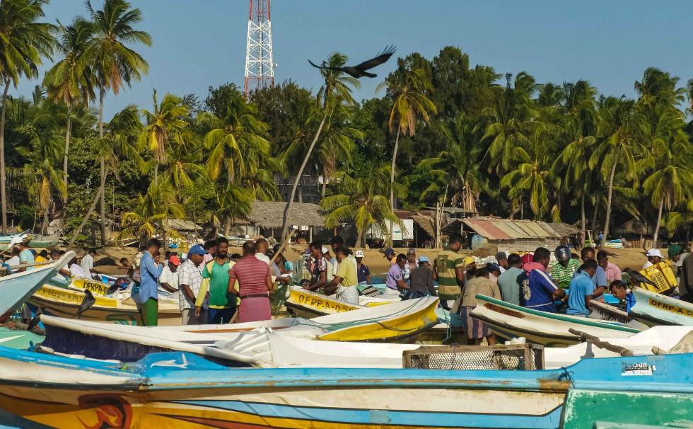 Fishermens in Arugambay
