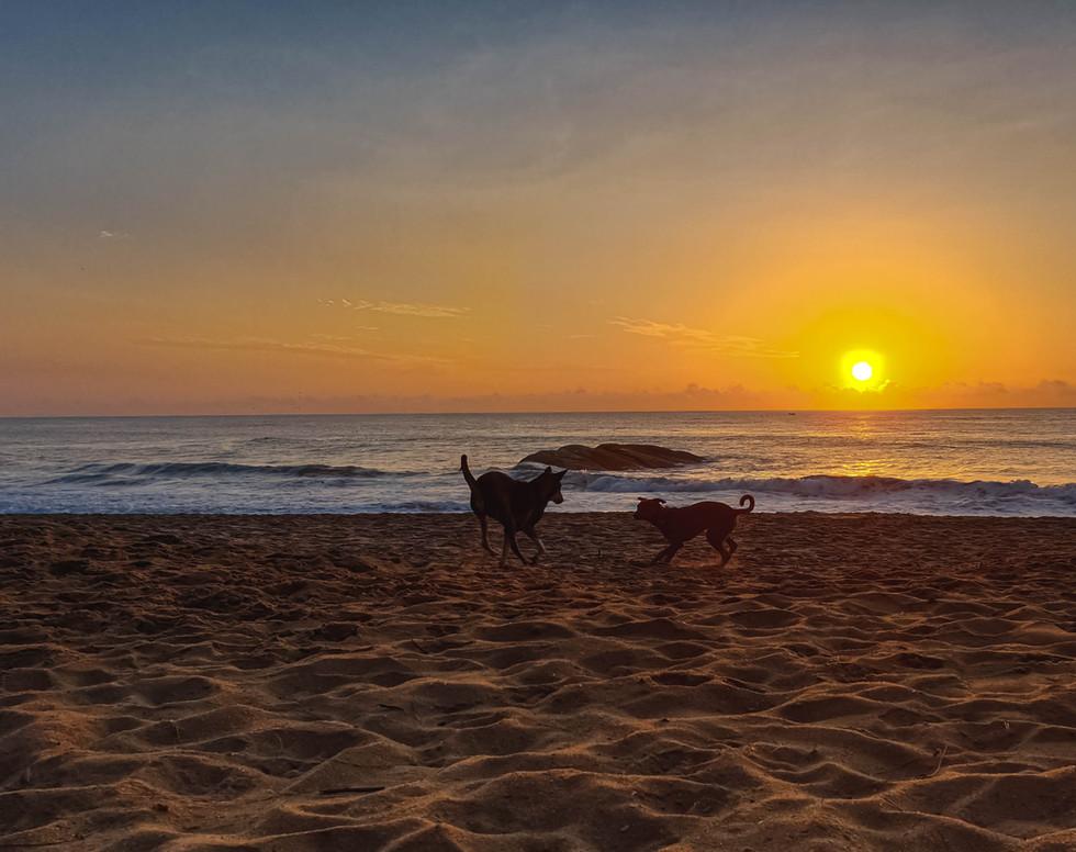 Sunrise at Arugambay