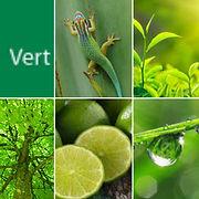 vert-laurence-ries.jpg