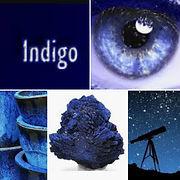 indigo-laurence-ries.jpg