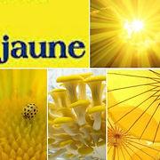 jaune-laurence-ries - Copie.jpg