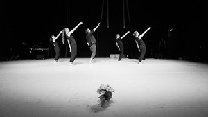 Performance Hilvaria Studio's