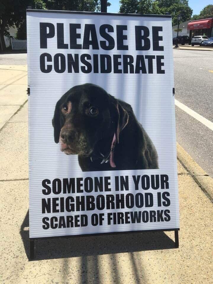 """Cachorros e Figos de artifícios- """"Cachorros e fogos de artifícios: como acalmar o pet nesse momento?""""- Braspets"""