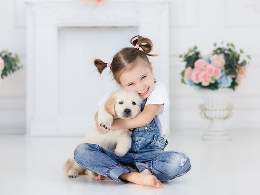 04 de Outubro - Dia dos Cachorros