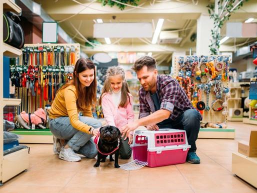 Produtos que vão trazer mais produtividade para o seu pet shop