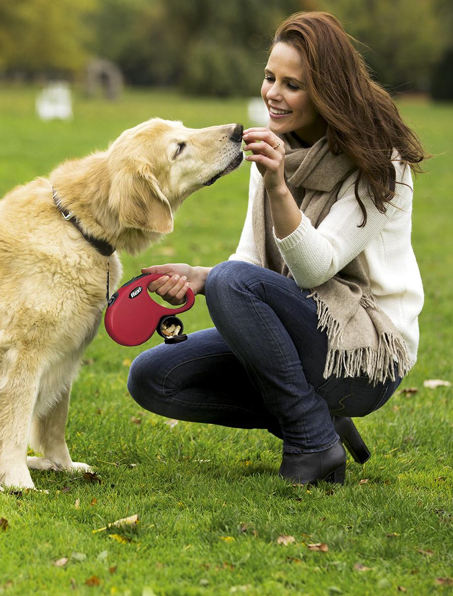 """Cachorro passeando- """"Como escolher a guia retrátil ideal para o meu pet?""""- Braspets"""
