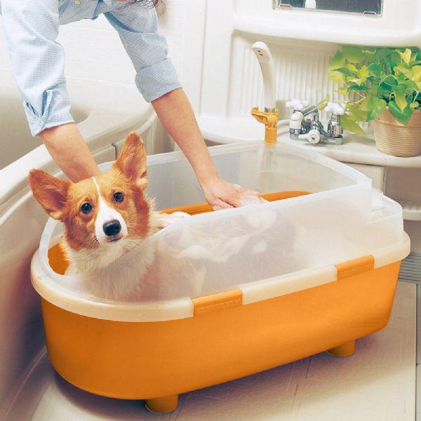 """CACHORRO TOMANDO BANHO- """"Produtos essenciais de banho e tosa que você precisa ter no seu pet shop """"- BRASPETS"""
