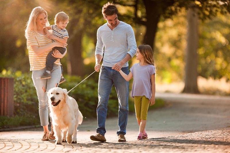 """Família cachorro- """"Dia 08 de Dezembro - Dia da Família""""- Braspets"""