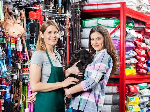 Fatores que você precisa levar em consideração na hora de abrir um pet shop