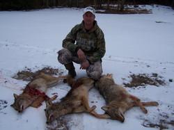 Coyote Hunt 2013