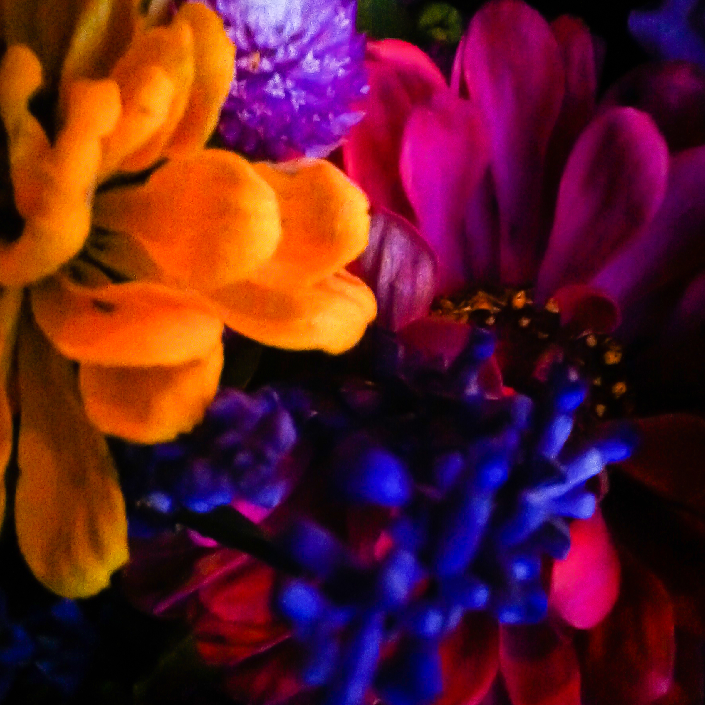 Farm Stand Flowers-9