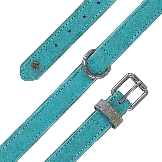 Brights Aquatech Collar Teal