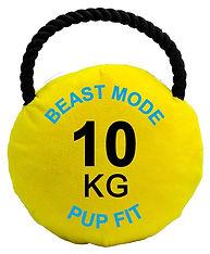 Beast Mode 10kg Kettlebell.jpg