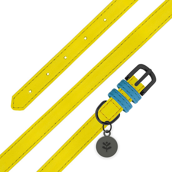 Yellow Colour Block Collar
