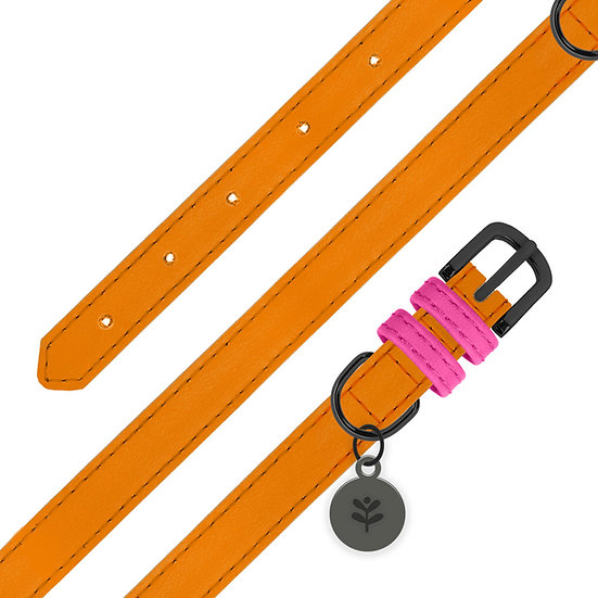 Orange Colour Block Collar