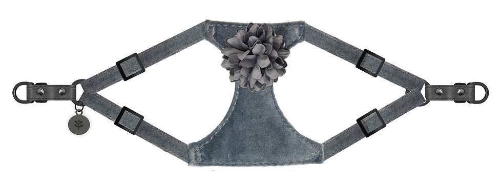 Velvet Flower Harness Grey