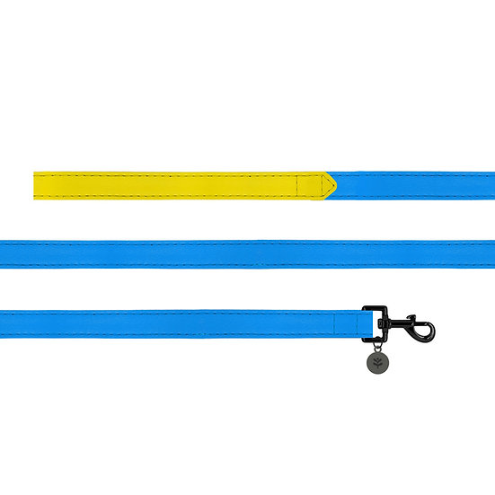 Blue Colour Block Lead
