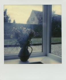 Den 2 Polaroid_1.jpg