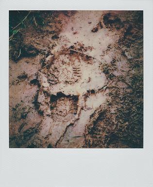 Fallen Footprint 3.jpg