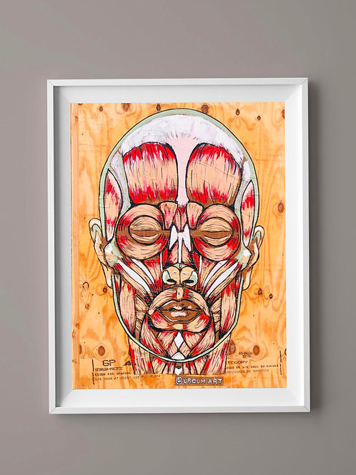 Limited Edition Print: Anatomy Face