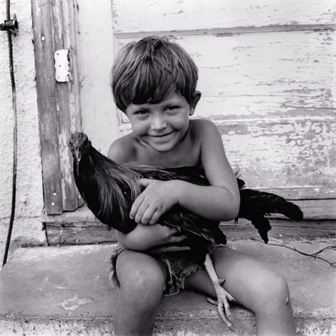 Henry and His Chicken