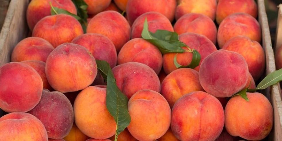 Annual  Peach Dinner
