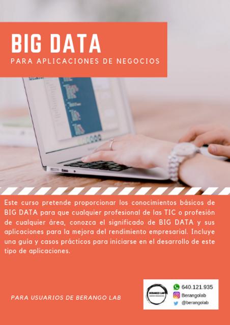 BIG DATA para aplicaciones de negocios.p