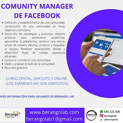 COMUNITY MANAGER DE FACEBOOK.png