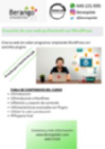 Creación_de_una_web_profesional_con_Wor